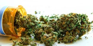 Legalized Cannabis Will Dramatically Reduce Prescription Drug Use
