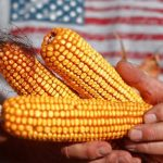 Monsanto Outsmarts the GMO Resistance