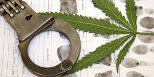 Arrests for Cannabis Possession Outnumber Arrests for All Violent Crimes Combined