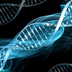 New Science: DNA Begins as a Quantum Wave