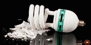 Mercury in Compact Fluorescent Lights is Contaminating Homes and Environment