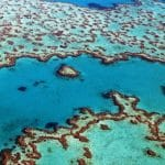 The Great Barrier Reef is Dying as Ocean Temperatures Rise