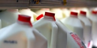 Milk Does Not Do A Body Good – Massive New Study Says