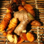 Turmeric Shows Major Promise in Defeating Mega Viruses