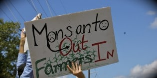 Organic Farmers vs. Monsanto: Appeal Filed!