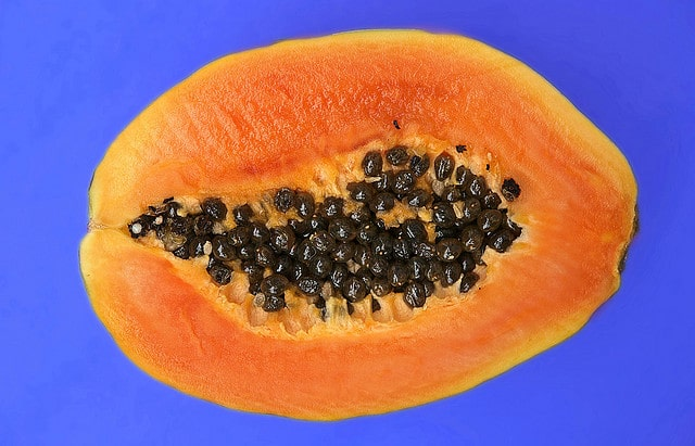 Flickr – Papaya – Frank Jakobi