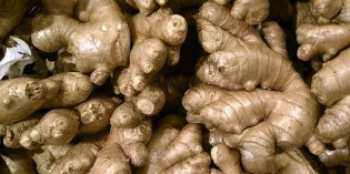 Can Ginger Beat Out The Multi-Billion Dollar Acid Blockers?