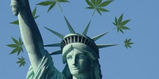 Industrial Hemp for a Prosperous Future
