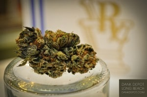 Flickr - Medical Marijuana - Dank Depot