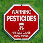 Are Pesticides Causing Your Food Allergies?