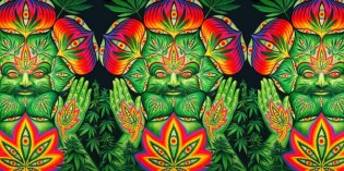 Cannabis, Consciousness and Common Sense