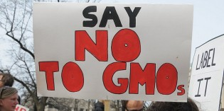 The GMO Lie Threatens Life on Earth Yet Some Resist