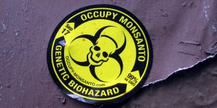 Alert: Monsanto Rider Slips Through Senate, Hour Glass Running…