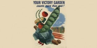 Propaganda Gardening – The Evolution of Revolution