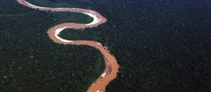 River in the Peruvian Amazon. Photo by- Rhett A. Butler