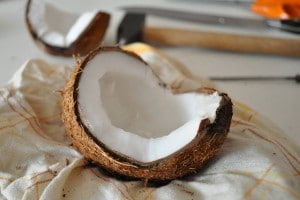 Flickr - open coconut - fred_v