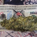 Flickr-marijuana dollar-666isMONEY