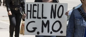 Flickr-GMO sign-John Novotny