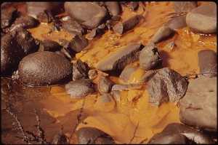 WIKI - Water Pollution