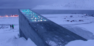 Bill Gates and GMO Cronies Plan $30 Million Seed Vault While Poisoning the Planet
