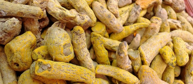 Bioactive Compound in Turmeric Regenerates Brain Stem Cells