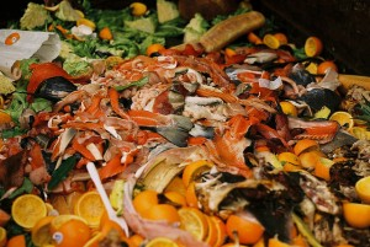 Flickr - Compost - sporkist