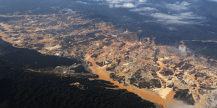 Gold Mining in the Amazon Rainforest Surges 400%