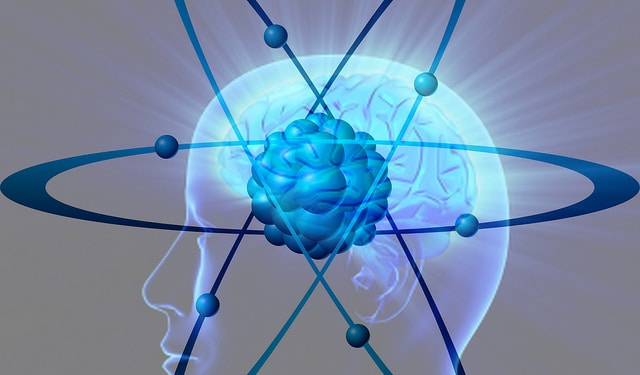 Is The Brain The Receiver Of Consciousness?