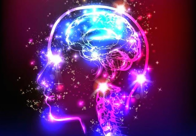 The Brain Does NOT Create Consciousness