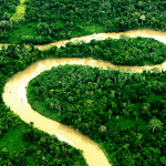 The End of the Amazon – Ecuador Approves Oil Drilling in One of the Most Biodiverse Regions on the Planet