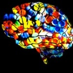 Protect Your Brain from the Perils of Polypharmacy