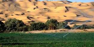 Re-Greening The Deserts