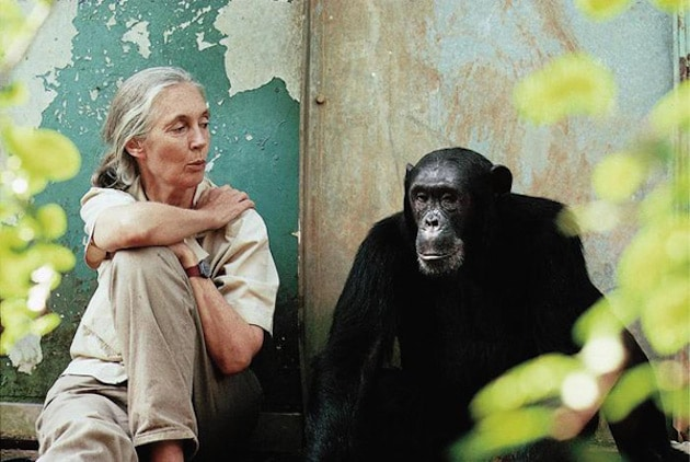 5 Reasons to Have Hope for the Planet - Jane Goodall