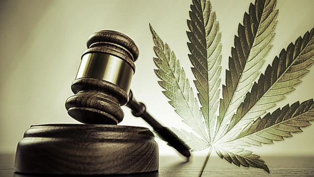 Cannabis Gavel Legal