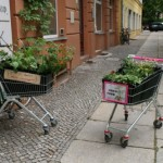 Guerilla Gardening Faces the Problems of Modern Food Supply