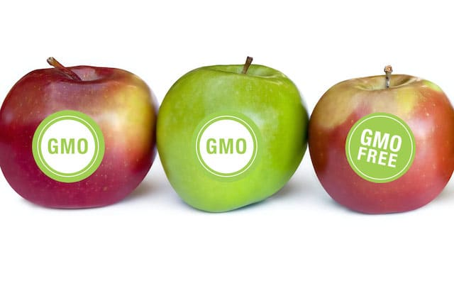 What Is New In Genetically Modified Foods