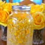 Super Easy and Natural Cure-All Master Tonic Recipe