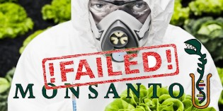 Court Finds Monsanto Responsible for Poisoning French Farmer