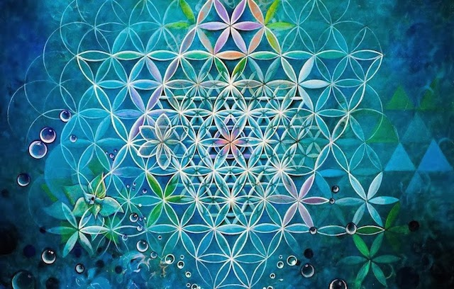 15 PLANTS THAT TEACH US SACRED GEOMETRY Sacred-geometry-flower-of-life