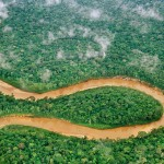 The 6 Biggest Threats to the Amazon Rainforest