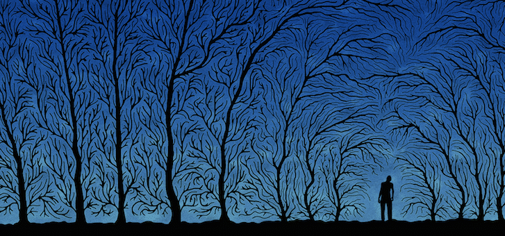 Trees Night Individual