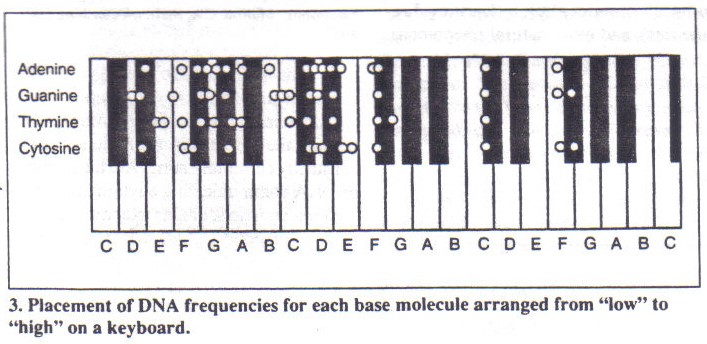The A=432 Hz Frequency: DNA Tuning and the Bastardization of