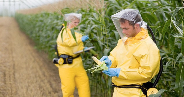 genetically-modified-food