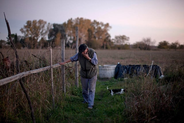 "Felix San Roman walks on his property in Rawson, in Buenos Aires province, Argentina, April 16, 2013. San Roman was beaten by farmers when he complained about clouds of chemicals drifting onto his property. ""This is a small town where nobody confronts anyone, and the authorities look the other way. All I want is for them to follow the existing law, which says you can't do this within 1,500 meters. Nobody follows this. How can you control it?"" he says. CREDIT: Natacha Pisarenko/AP"