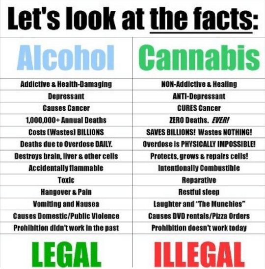 proof_marijuana_is_safer_than_alcohol