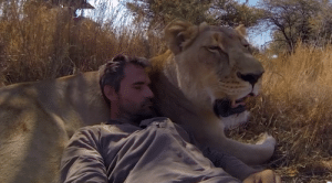 animal-communicator-kevin-richardson-with-lion-300x166