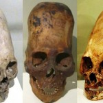 Elongated Skulls Of Peru: Not The Only Ones!