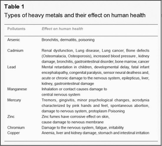 Heavy-metals-and-their-effects