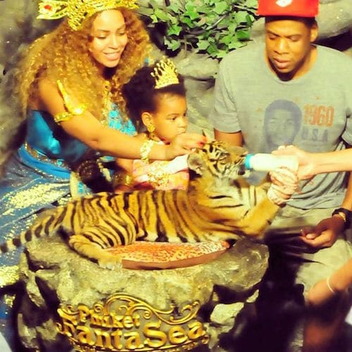 Beyonce, Jay-Z and family with tiger cubs.