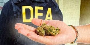 Why The DEA and HHS Should Be Abolished
